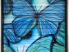 darioart-farfalle